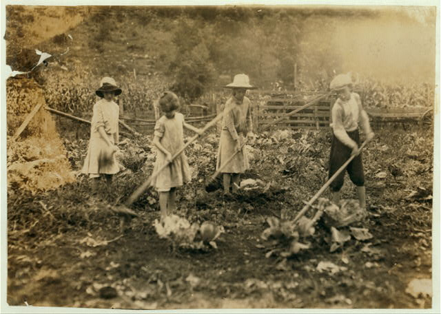 Children working on a farm near Mt. Vernon, Ky., in 1916. Credit: Library of Congress